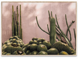 Bilde av Plants On Pink 70x50 cm